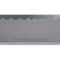 CT-flex 3000 Eberle Ленточная пила по металлу Eberle Ленточные пилы EBERLE Ленточные пилы